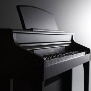 Top of the range hybrid Piano