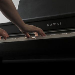 A Piano that is suitable for all levels